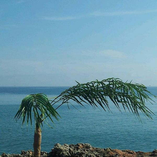 Sea View Beautiful Sky Nature_collection