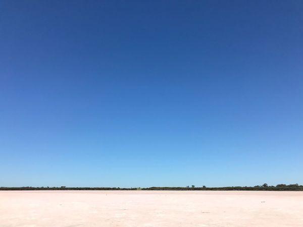 Pink Lake in South Australia Salt Lake Outback South Australia Australia South Australian Outback Blue Clear Sky Tranquil Scene Nature Desert Arid Climate Salt - Mineral