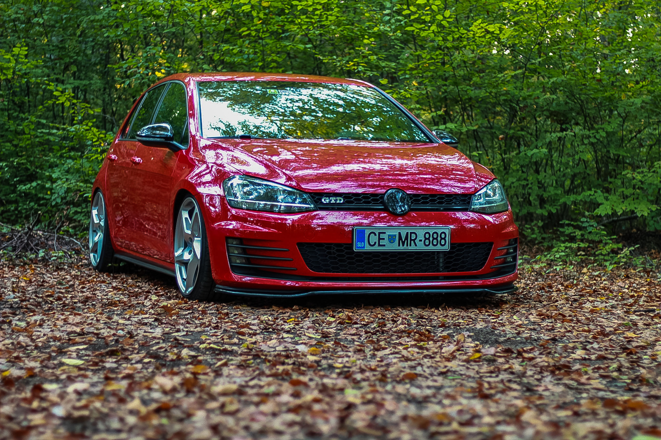 red, mode of transportation, transportation, tree, car, motor vehicle, plant, day, nature, land vehicle, land, no people, plant part, leaf, stationary, outdoors, autumn, forest, growth