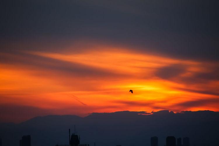 Silhouette of city against orange sky