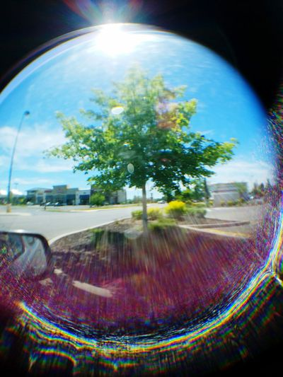 I bought a little lens kit for my smartphone camera for $5 today. It came with a tiny wide angle lens, a macro lens, and a fisheye lens. This photo was taken using the fisheye. I like the effect. Took this from inside the car looking into the parking lot. Smartphonephotography Fisheye Lens Flare Cameraphone Tree Fun Cool Effect Round Samsung Galaxy S7 Colorful Utah Distortion Light Sunlight Outdoors Day Loving It  Special Effects Nature Purple Blue Green MeinAutomoment The City Light