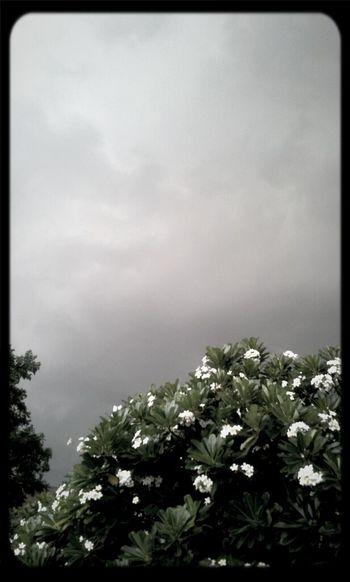 Cloudy Blackandwhite