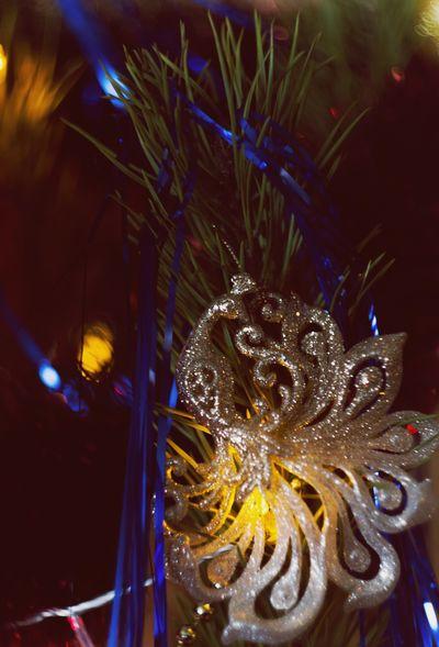 New Years New Year Around The World Cristmas Tree CRISTMAS💙 Cristmastime Happy New Year Cristmas Tradition New Year Cristmas Time♥ Cristmastree Cristmas Cristmasdecor Marry Christmas Christmastime