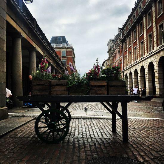 London Covent Garden  Cobblestone Cobbles Cobbled Streets Flowers September