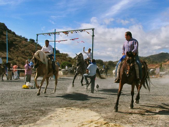 Cinta. Spanish Culture Cinta Andalucia, Spain Event Day Horse Horseback Riding Leisure Activity Fiesta Andalucia Rural Awehaven's Andalucia