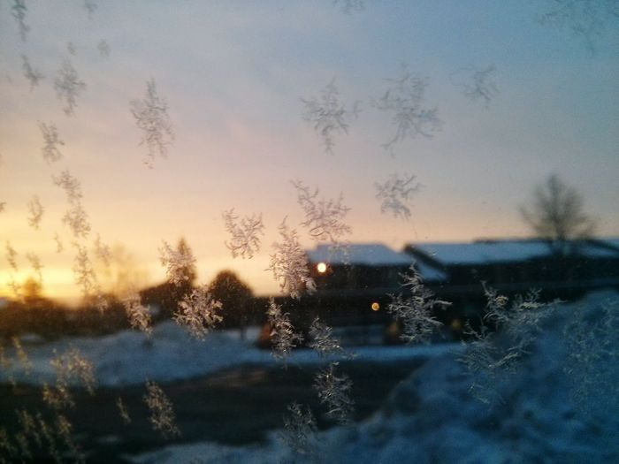 Deepfreeze snowflakes Morning Sky Snow ❄ Sunrise Troy Pure Michigan