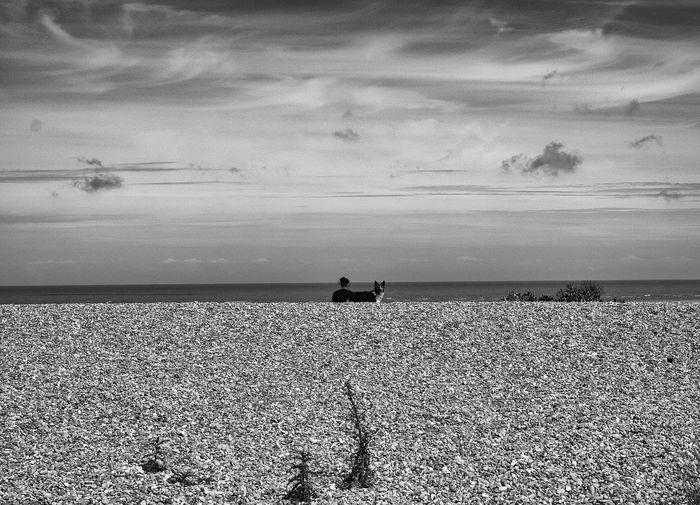 Black & White By The Sea Calm Cloud Cloud - Sky Horizon Over Water Ocean Shore Taking Photos