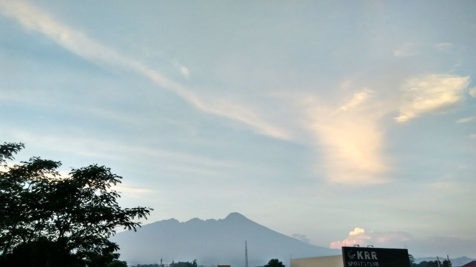 Pale Sky Pale Sky Blue Tone In Tone Pale Morning Light Foggy Morning Freshness Wide Spaces Nature Beauty Nature Is Art Morning Blessings Oxygen Gunung Salak Mount Salak Bogor, Indonesia