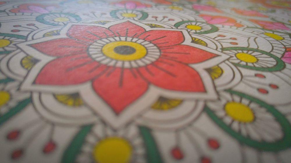 Colors Coloring Mandala Wonders Color Art For Everyone Mandala Adulting Pattern Pieces