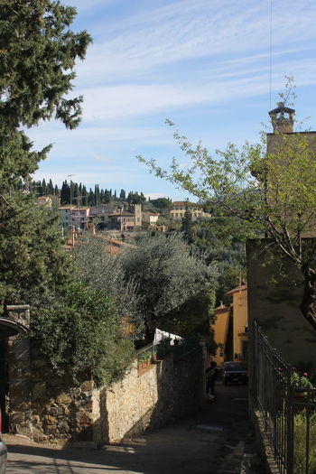 Colline Fiorentine Firenze Italia Toscana