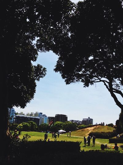 BBQ Hello World Relaxing Makuhari Blue Sky Green Green Green Green!  Park Enjoying Life EyeEm Nature Lover