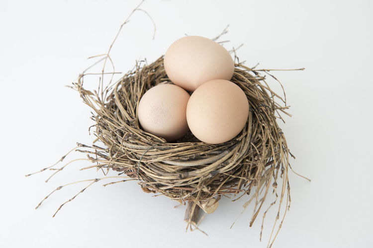 Egg in the nest Bio Decor Easter Easter Eggs Nesting Raw Backgrounds Basket Brown Decoration Egg Food Hideout Indoors  Macro Nest Object Organic Raw Food Season  Skin Color Spring Springtime White White Background