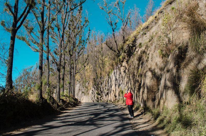 traveler capture the beautiful moment EyeEm Selects Bromo Travelphotography Treeshadow Bromo Tengger Semeru National Park Bromo Mountain Indonesia Traveler Travel Photography Tree Real People Plant Lifestyles Sunlight One Person Rear View Women Day Sky Shadow Leisure Activity Adult Transportation The Way Forward Direction Nature Full Length Walking Outdoors Be Brave