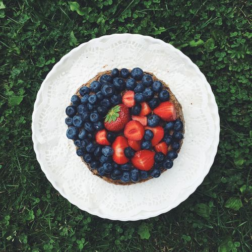 Berries Blueberries Cake Food And Drink Foodphotography Freshness Fruit Grass High Angle View IPhoneography Multi Colored No People Vegan Vibrant Color
