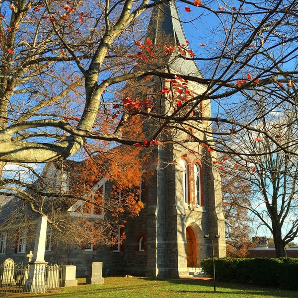 Autumn Church Church Architecture Perspective Autumn Trees Lines IPhoneography