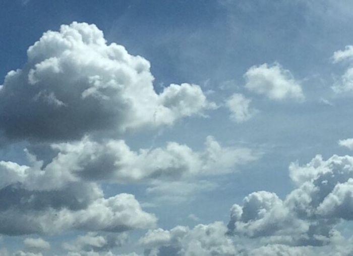 The head in clouds. ☁️