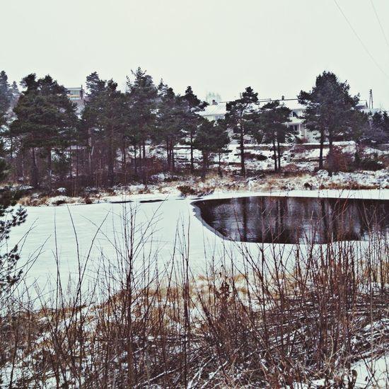 Winter Snow Taking Photos