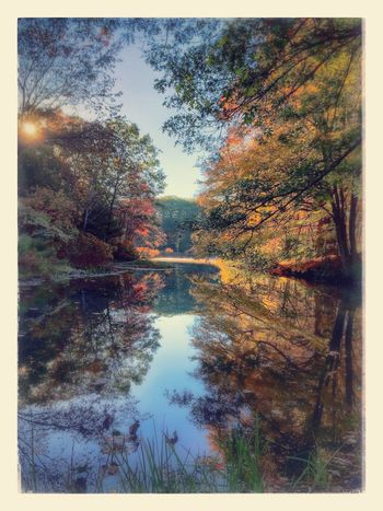 Autumn Sunrise on the Blackstone River Iphone5s IPhoneography IPhone Photography Procamera Perfectlyclear Snapseed Foliage Autumn Colors Beautiful Day Landscape