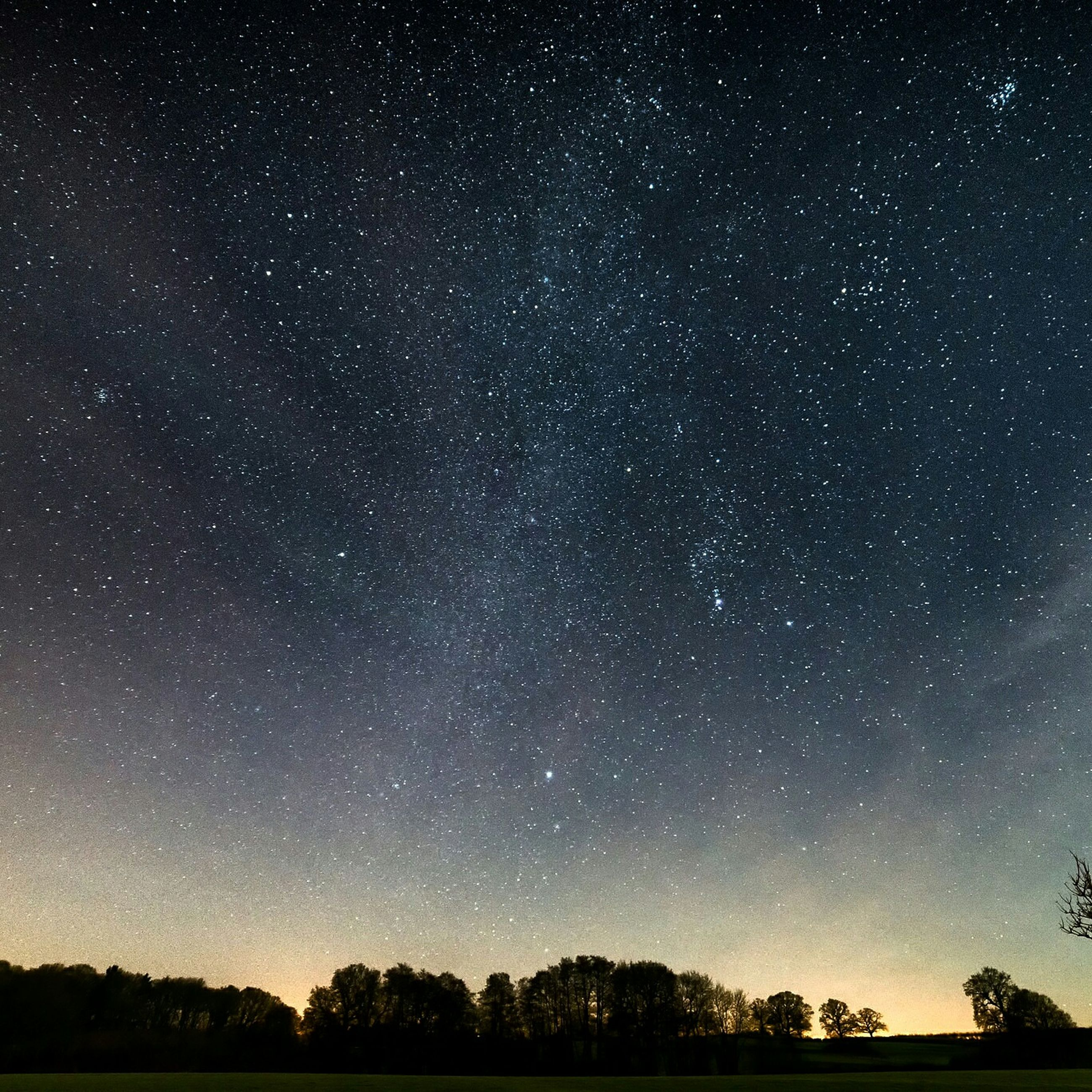star - space, night, star field, astronomy, scenics, galaxy, tranquil scene, beauty in nature, star, space, tranquility, tree, sky, infinity, nature, low angle view, constellation, milky way, idyllic, majestic
