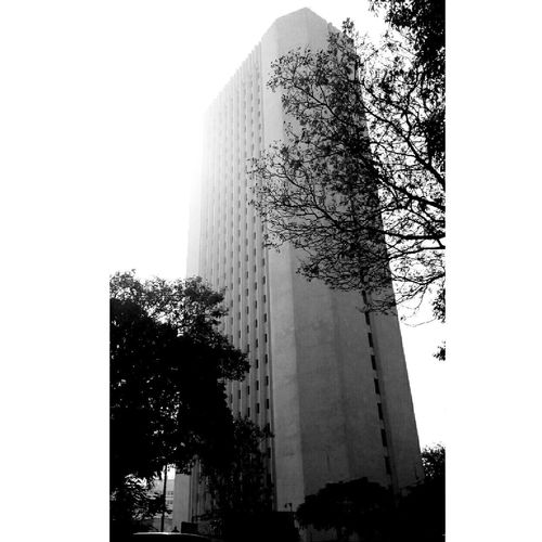 Window Tower Building Exterior Architecture Modern Low Angle View No People Cityscape Outdoors Beginnerphotographer Beginner Mobilephotography Backgrounds MotoClick Blacknwhite Blackandwhitephoto