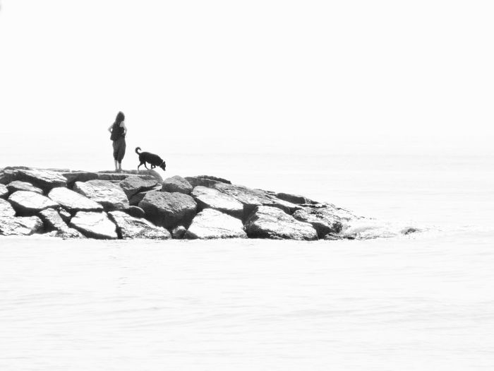 Woman With Dog Standing Groyne Against Clear Sky