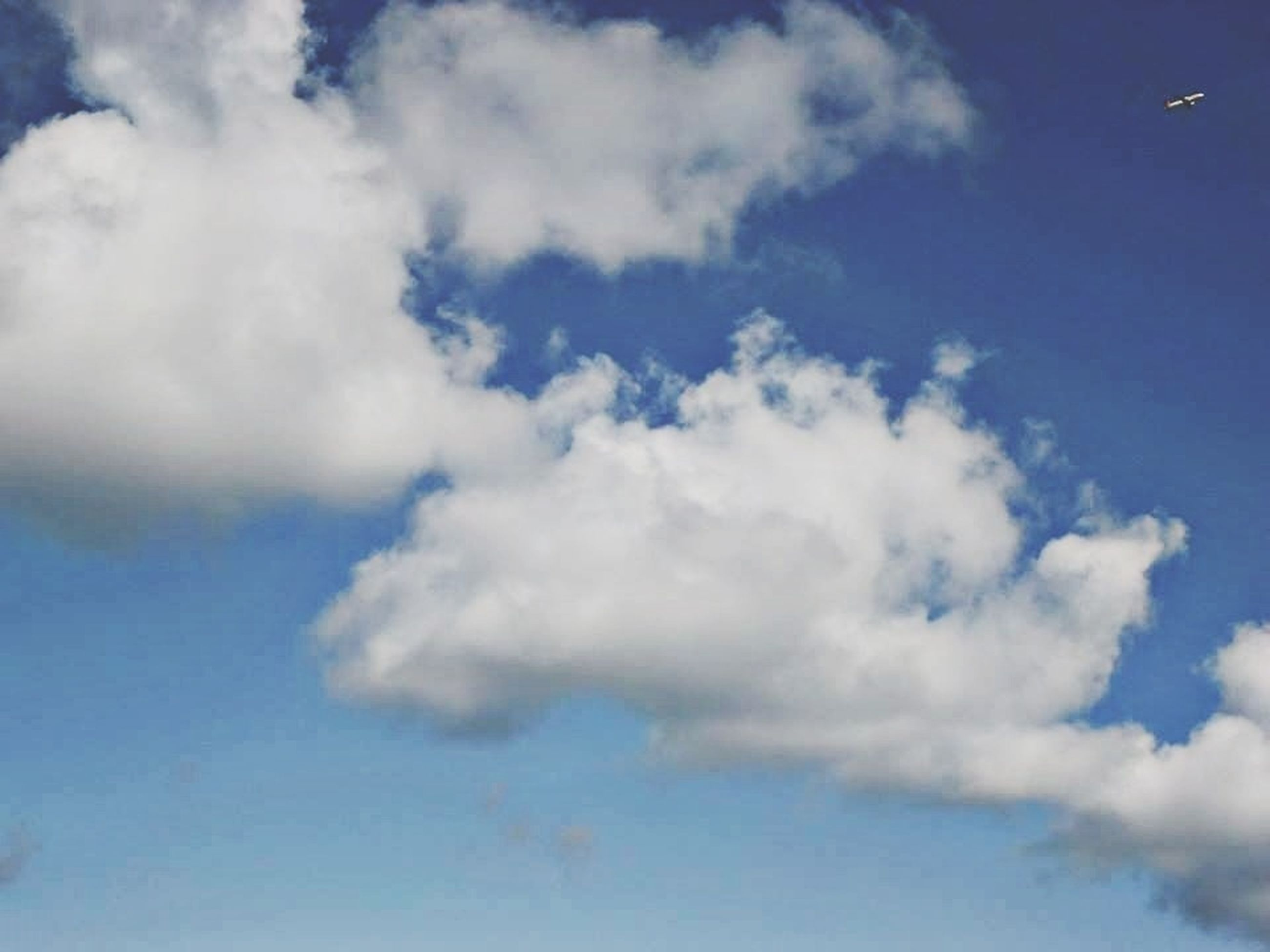 sky, blue, low angle view, sky only, cloud - sky, beauty in nature, tranquility, scenics, nature, white color, tranquil scene, cloudscape, cloud, cloudy, backgrounds, idyllic, day, outdoors, white, fluffy