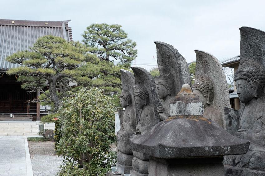 柴又の真勝院 Architecture Built Structure Fujifilm Fujifilm X-E2 Fujifilm_xseries Japan Japan Photography Religion Temple Tokyo Xf35mm 寺 寺院 東京 柴又 柴又七福神 真勝院 葛飾区