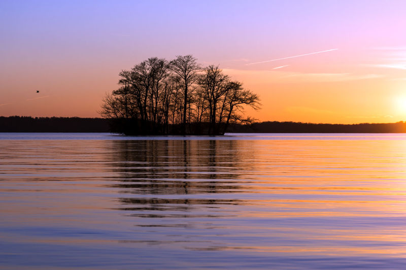 Sunset in Plön Bare Tree Beauty In Nature Lake Landscape Nature No People Outdoors Reflection Scenics Silhouette Sky Sunset Tranquil Scene Tranquility Tree Water Waterfront