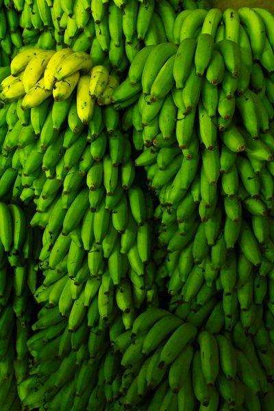 Banana Fruit Banana Fruit Fruit Colors