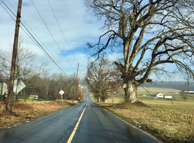 Chester County Pennsylvania Road The Way Forward Transportation Bare Tree Sky Tree Day Diminishing Perspective No People Outdoors Built Structure Nature Architecture EyeEmNewHere EyeEm Selects