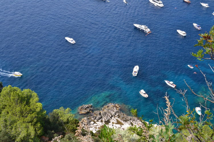Mediterranean  Naples Beauty In Nature Beauty In Nature Blue Boats Campaniafelix Capri High Angle View Land Mode Of Transportation Nature Nautical Vessel No People Outdoors Plant Sailboat Scenics - Nature Sea Tranquil Scene Tranquility Transportation Travel Water Yacht
