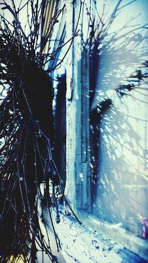 Wreath Glass