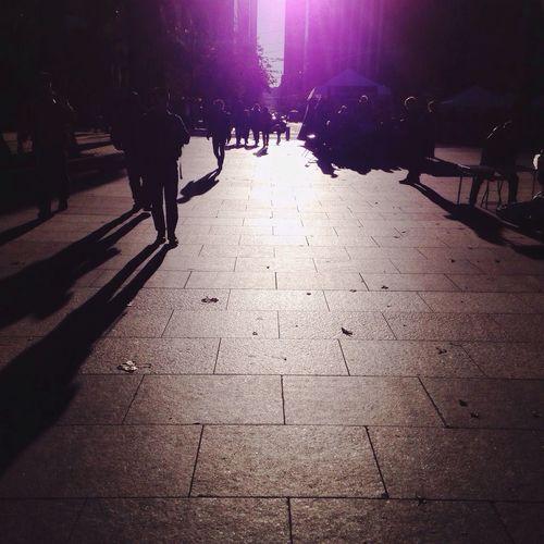 City Shadows City People Urban San Francisco California City Life Shadow Light And Shadow IPhoneography