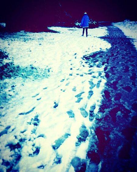 Winter walk Winter Walk Winterwonderland Wintersun Snow Snowday Ice Frost Freeze Walking Park Northernireland PureNorthernIreland Discovernorthernireland Ireland Cookstown Tyrone Drummanorforestpark Nationaltrust Nationaltrustni Path FootPrint Footstep Cold Saturday