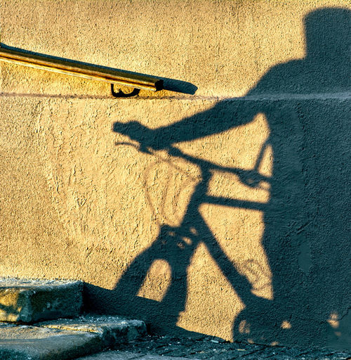 Shadow of person holding bicycle on sunny day