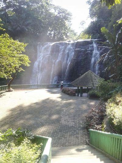 hinulugang taktak Water Tree Waterfall Spraying Motion Sunlight Sky