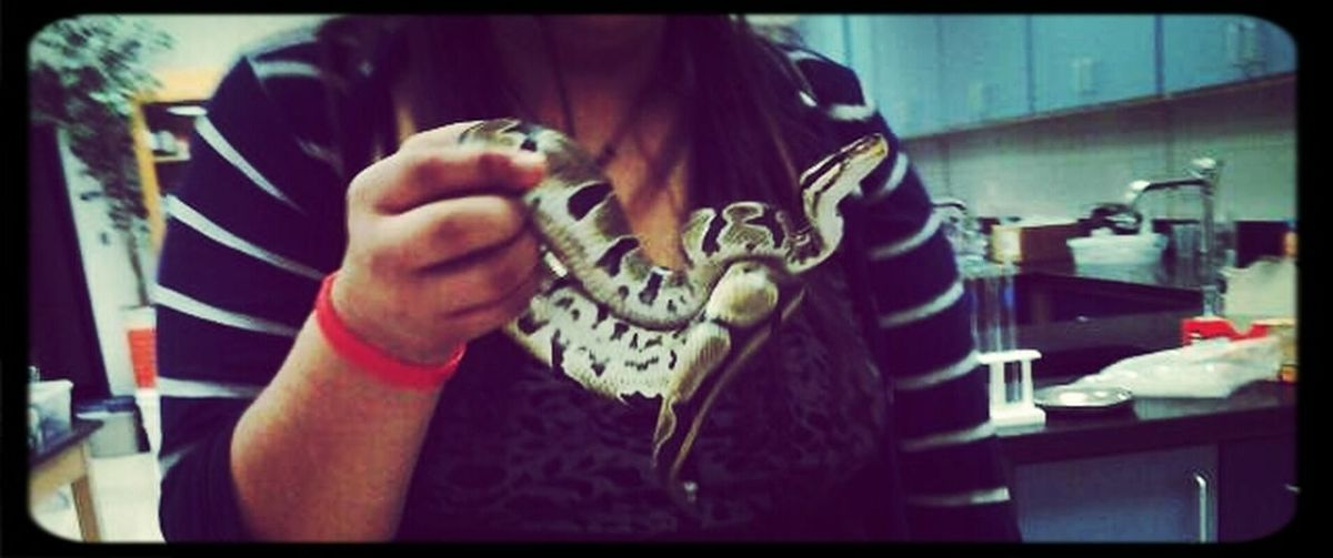 Hangout With Beetlejuice;D #friend's#snake(':