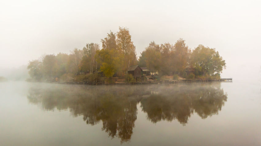 misty autumn morning Fog Water Tree Reflection Sky Plant Tranquility Beauty In Nature Tranquil Scene Lake Waterfront Nature Scenics - Nature No People Built Structure Architecture Building Exterior Idyllic Outdoors Hazy