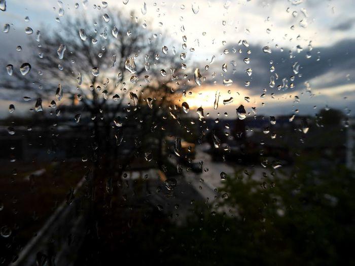 View Through My Window Sundown After Rain RainDrop Sunset Simple Beauty Eye4photography  For My Friends 😍😘🎁 Enjoyinglife  Enjoying The View Springtime💛 Beauty In Nature Sundown, Nightfall, Close Of Day, Twilight, Dusk, Evening; Sunse Rainy Days☔