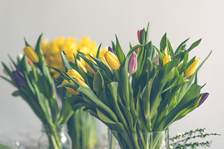 Yellow tulips flowers bouquet on a wooden table Bouqet Bouquet Bunch Of Flowers Close-up Day Easter Filtered Image Floral Flower Freshness Gift Indoors  Natural Light Nature Rustic Season  Spring Tulips