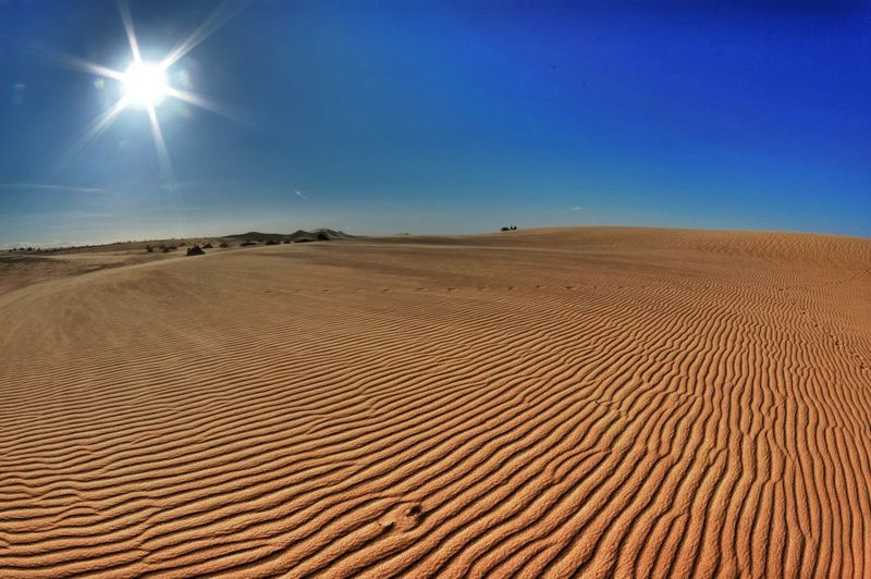 on that Perfect Rippled Ground we walk - that of all place in the universe - was given to us - in solitude and confidence - and all we do is let it blow away - by those Winds Of Chance - we never understood as part of it --- @ Imperial Dunes, CA