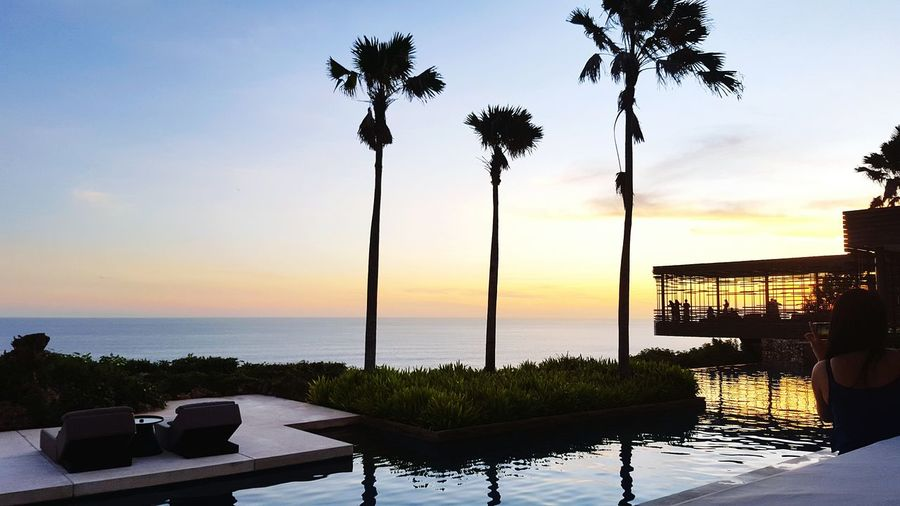 INDONESIA Palm Tree Sea Horizon Over Water Tree Water Tranquil Scene Sky Scenics Nature Vacations Sunset Bali Architecture Palm Tree Silhouette Palm Trees People In The Background