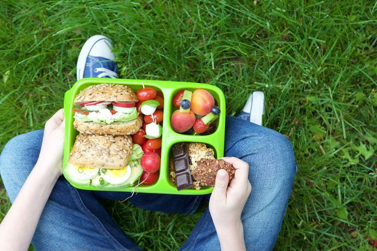 Day Disposable Eating Field Food Food And Drink Freshness Grass Green Color Hot Dog Leisure Activity Low Section Lunch Nature Outdoors People Picnic Ready-to-eat Real People Sandwich Sausage Sesame Seed Sky