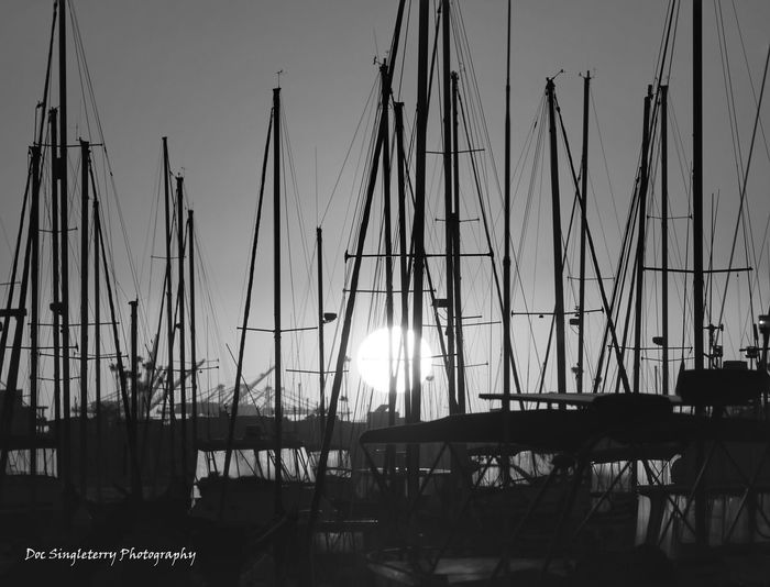 Sunset Sailboat Silhouettes The Great Outdoors - 2017 EyeEm Awards Sailboats Twilightscapes Sunset Californialove Silhouettes Outdoors Southern California Marina Scenics Tranquility Sailing Harbor Silhouette Sunset Silhouettes Perspectives Live For The Story Sunsets Sunrise Sunrise_sunsets_aroundworld Black And White Bnw_collection