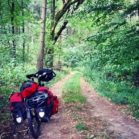 Into the wild Lüneburgerheide Biketouring Draußen Radtour