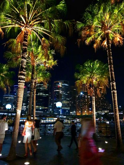 Group of people by palm trees at night