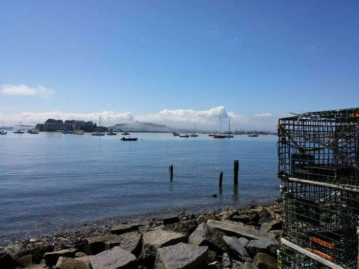 Once upon a beautiful day, the sun and fog kissed the bay.