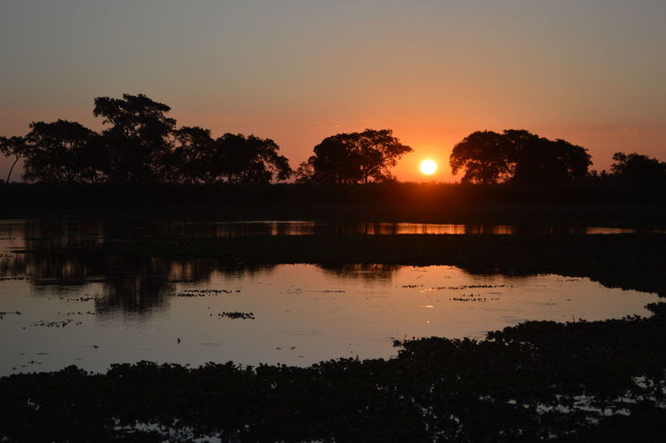 Sunset at the river Sunset Sky Reflection Silhouette Scenics - Nature Water Tranquility Beauty In Nature Tranquil Scene Lake Tree Plant Nature Idyllic No People Sun Orange Color Non-urban Scene Outdoors River
