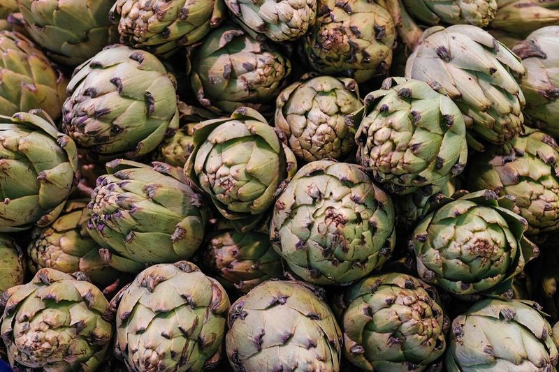 Freshness Food Food And Drink Vegetable Healthy Eating Artichoke
