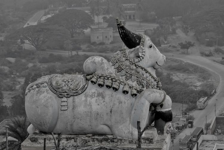 Animal Themes Black & White Bull Statue BullGod Nandi Day Elephant No People Outdoors Sculpture Shivagange India Statue View From The Top